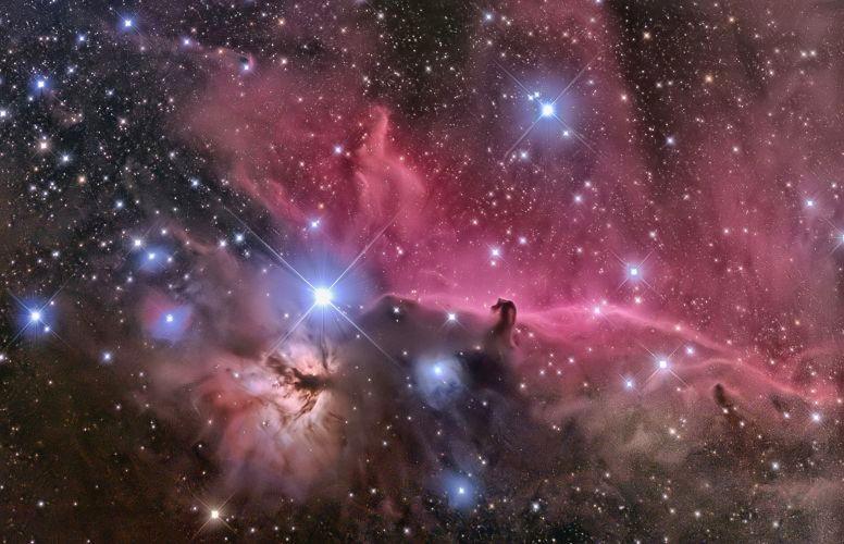馬頭星雲.燃える木
