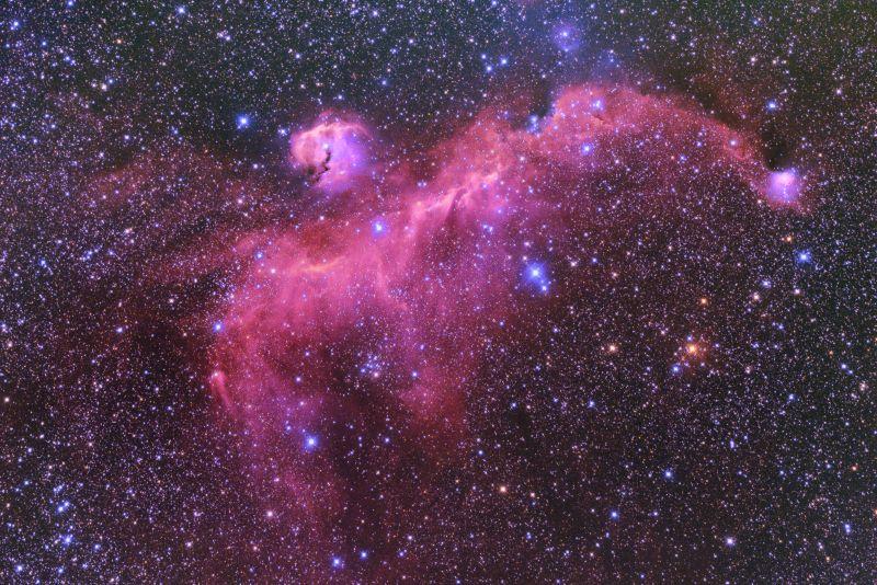 かもめ星雲/IC2177/Seagull Nebula/