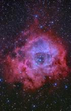 バラ星雲 The Rosette Nebula  NGC 2237-9.NGC 2246