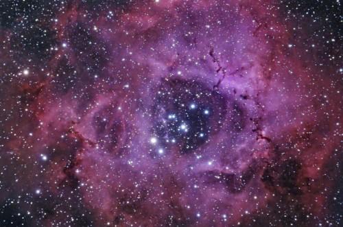 ngc2237caldwell49the-rosette-nebula